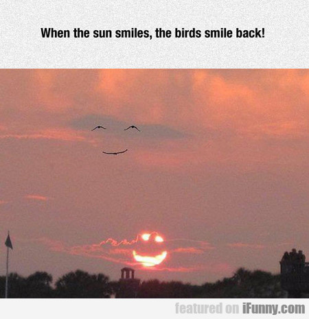 When The Sun Smiles, The Birds Smile Back!