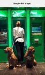 Using The Atm At Night...
