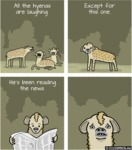 All The Hyenas Are Laughing
