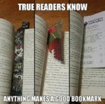 True Readers Know Anything Makes A Good Bookmark