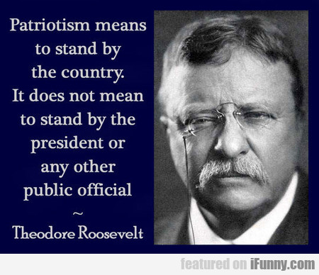 Patriotism Means To Stand By The Country