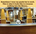 Sometimes I Wear My Panda Hat To Work