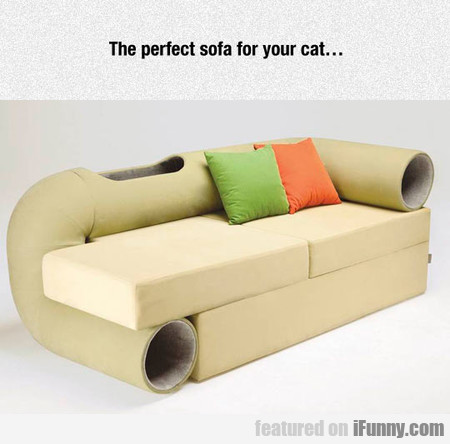 The Perfect Sofa For Your Cat...