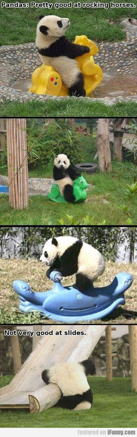 Pandas, Pretty Good At Rocking Horses