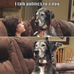 I Talk Politics To A Dog