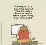 Working In I.t. Is Like Being Married