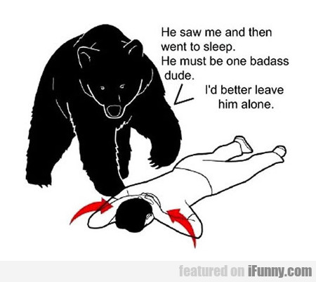 What Bears Really Think