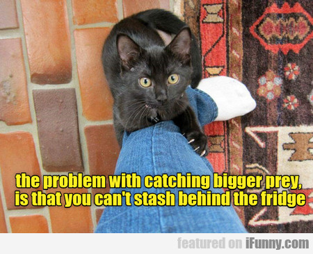 The Problem With Catching Bigger Prey