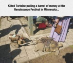 Kilted Tortoise Pulling A Barrel Of Money At The..