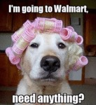 I'm Going To Walmart