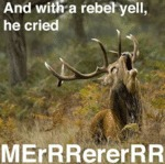 And With A Rebel Yell, He Cried