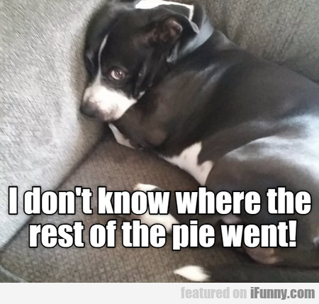 I Don't Know Where The Rest Of The Pie Went
