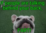 If People Are Talking Behind Your Back...