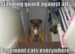 Standing Guard Against All