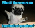 What If There Were No Hypothetical Questions?