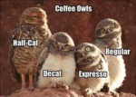 Coffee Explained With Owls