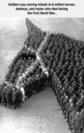 Soldiers Pay Moving Tribute To 8 Million Horses