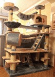 Epic Cat Tree, Probably The Mansion Version