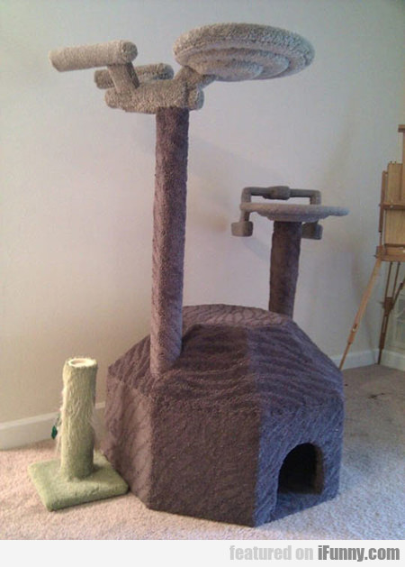 Majestic Star Trek Cat Tree