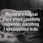 My Bed Is A Magical Place Where...