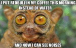 I Put Redbull In My Coffee This Morning