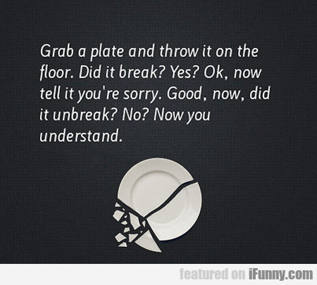 Grab A Plate And Throw It On The Floor