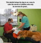 This Dentist Brings His Dog In As A Way To Calm