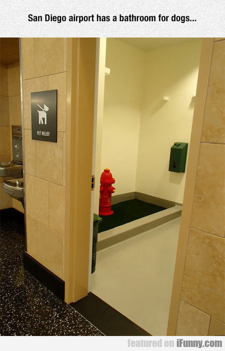 San Diego Airport Has A Bathroom For Dogs...