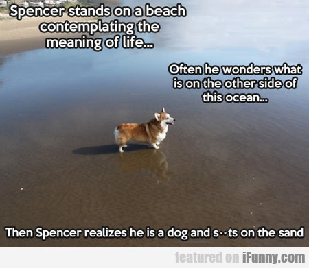 spencer stands on a beach contemplating