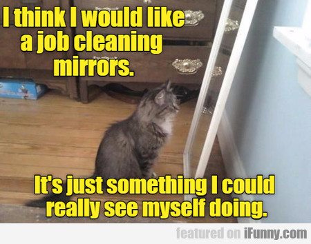I Think I Would Like A Job Cleaning Mirrors