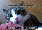 You Threw Away The Bird I Gave You?