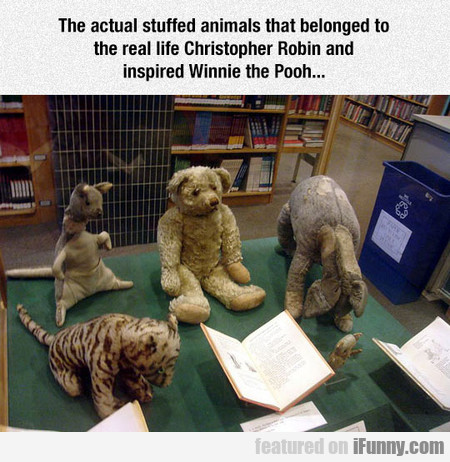 The Actual Stuffed Animals That Belonged To Christ