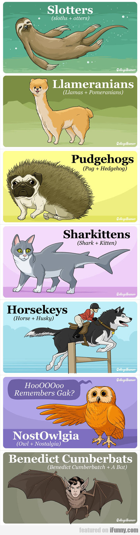 If Hybrid Animals Would Exist
