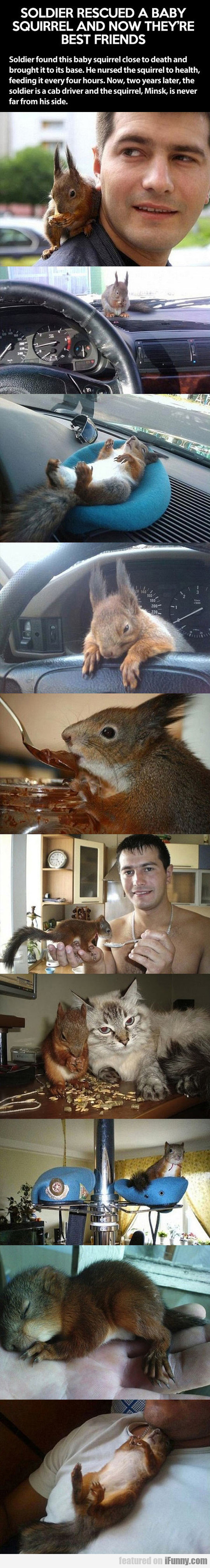 Soldier Rescued A Baby Squirrel And...