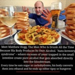 The Man Who Is Drunk All The Time