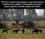 This Farm Owner Was Denied A Council Permit