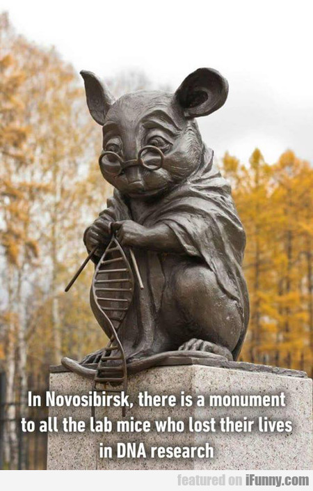 In Novosibirsk, There Is A Monument To All The Lab