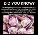 The Mystery Flavor Of Dum Dums Lollipops