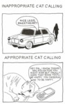 Inappropriate Cat Calling