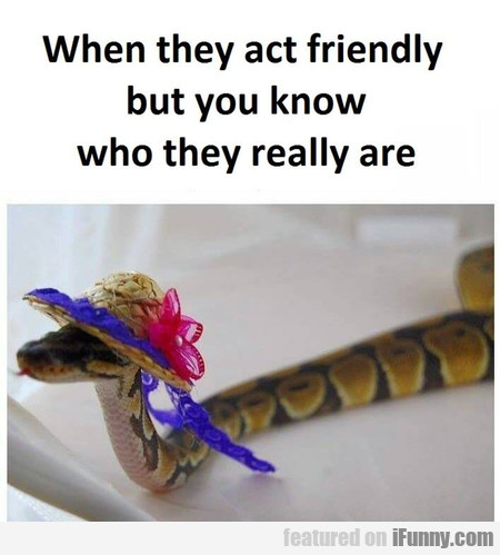 When They Act Friendly