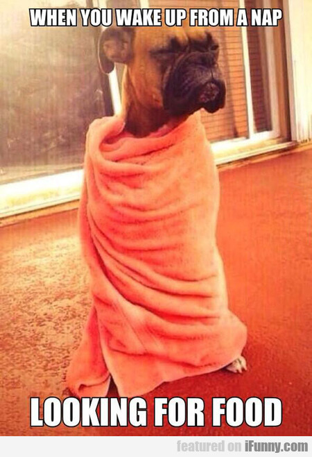 when you wake up from a nap