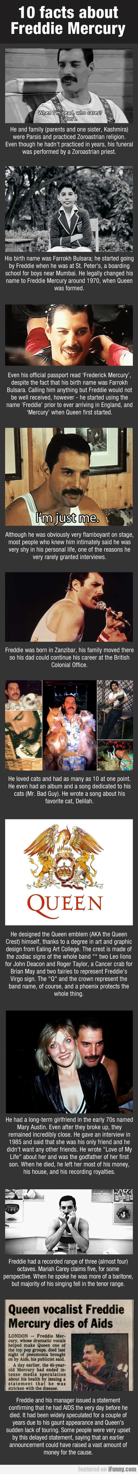 10 Facts About Freddie Mercury