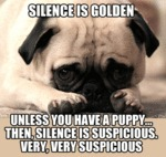 Silence Is Golden Unless...