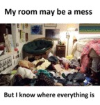 My Room May Be A Mess