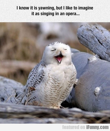 Singing In An Opera...