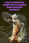 If This Is A Dancing Tiger...