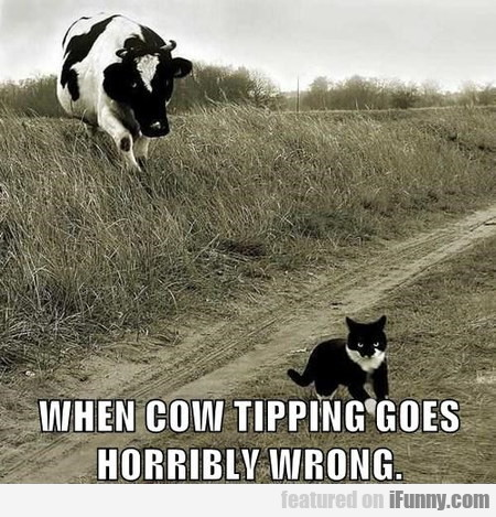 when cow tipping goes horribly wrong