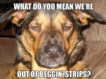 What Do You Mean We're Out Of Beggin' Strips?