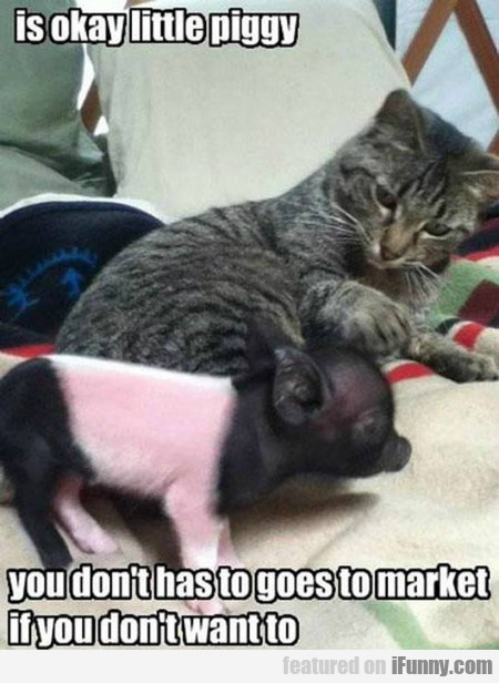Is Okay Little Piggy... You Don't Have To Go...