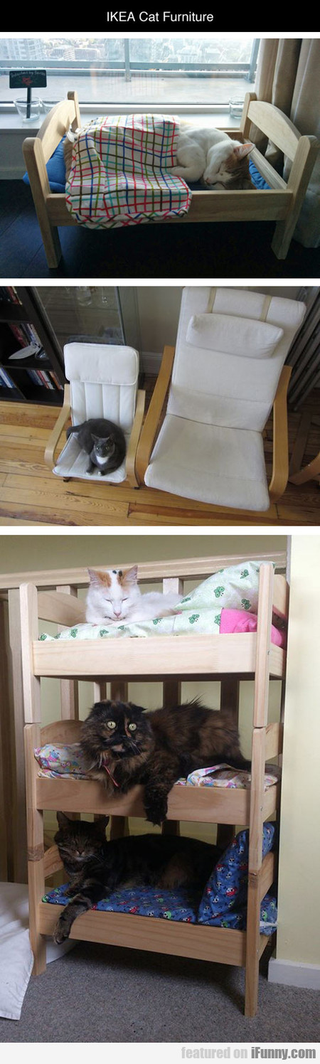 Ikea Furniture For Cats